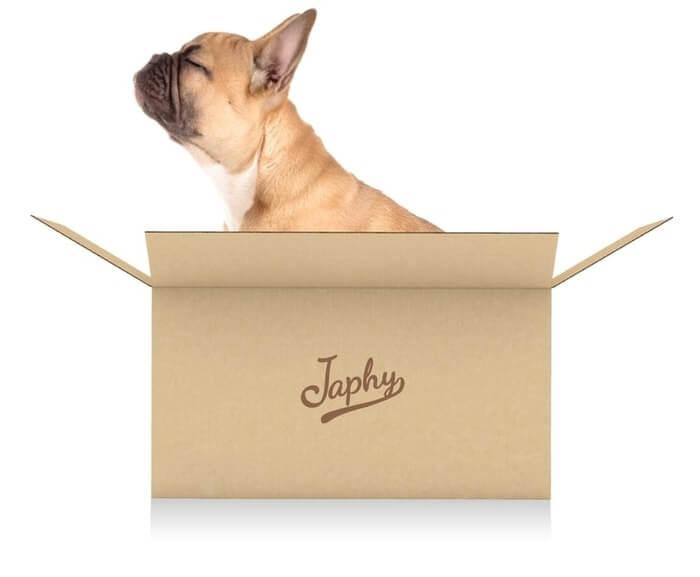 Un chien dans un carton Japhy