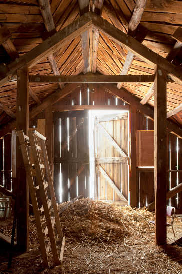 Barn Light, Brookford Farm