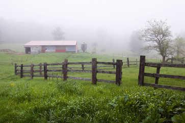 Morning Fog, Riverslea Farm