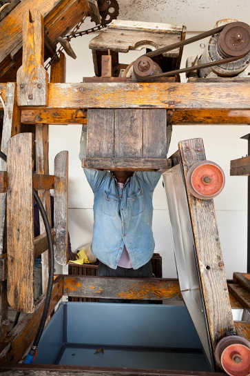 Warrell Demonstrates the Cider Press, Barker's Farm