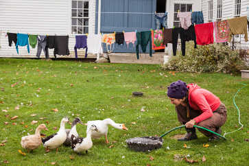 Jean and the Birds, Meadow's Mirth Farm