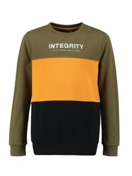lmtd sweater groen toby