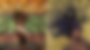 Tiwa Savage 49-99 EXPLAINED. Everything You Missed.