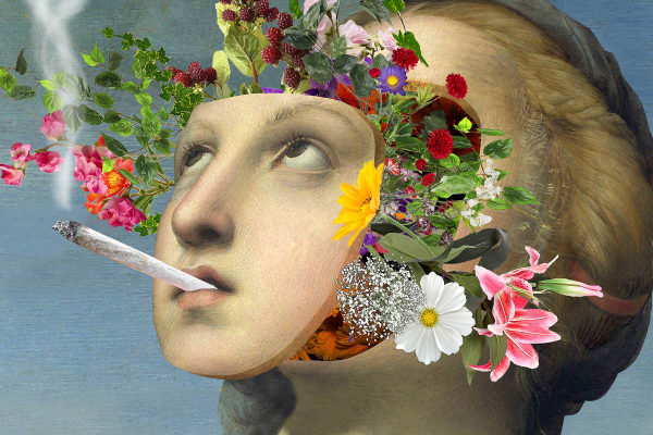 How Weed Affects Your 5 Senses