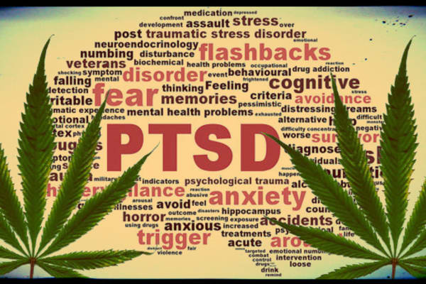 Weed For PTSD?