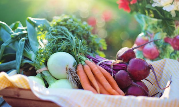 7 Things to Know Before Going Vegetarian