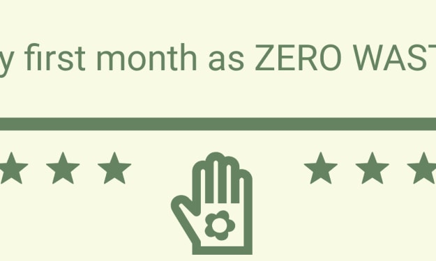 My First Month as Zero Waste