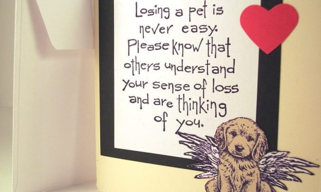 The Worst Part of Losing a Pet Is Losing Them