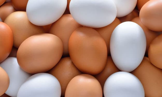 Differences Between White and Brown Eggs