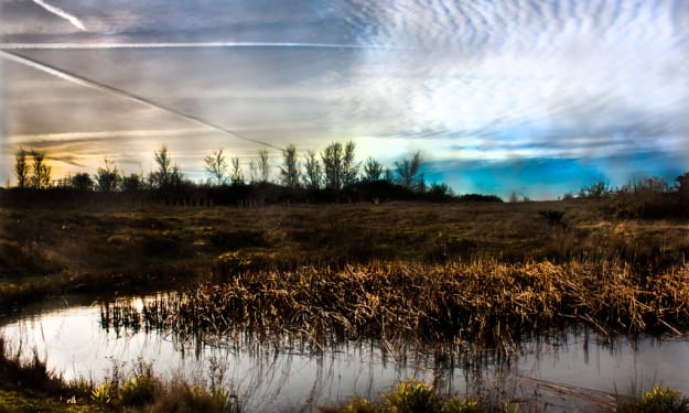 The World through the eye's of a Photographer