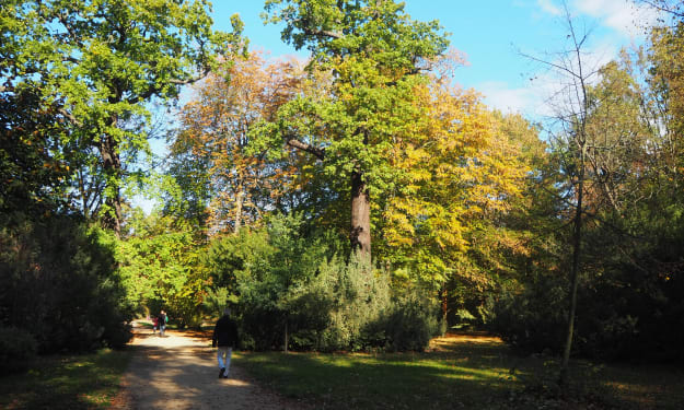 The Gardens and Grounds of Charlottenburg Palace, Berlin