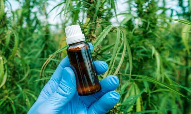 CBD - The Other Healing Compound in Marijuana