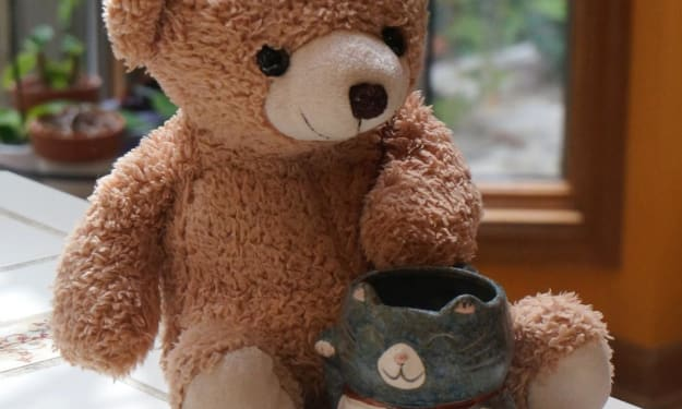 Mr. Teddy at Tea Time