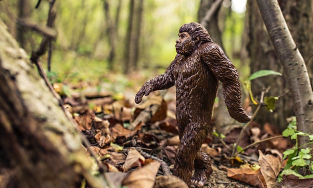Are Bigfoot and Other Such Creatures Real?