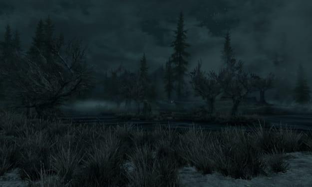 Swamp Night