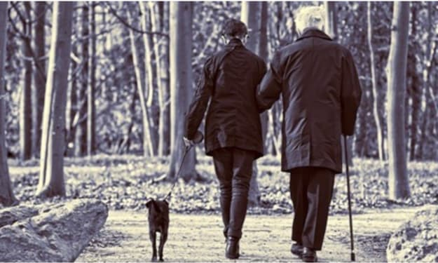 Dog Ownership and the Elderly