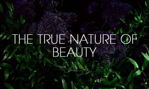 Why Choose Organic Perfume