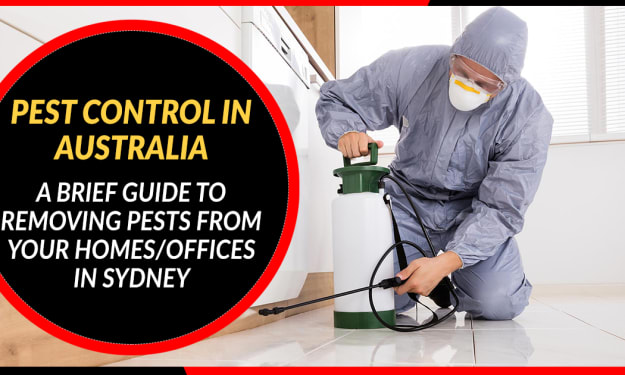 Pest Control in Australia -  A Brief Guide to Removing Pests from Your Homes/Offices in Sydney