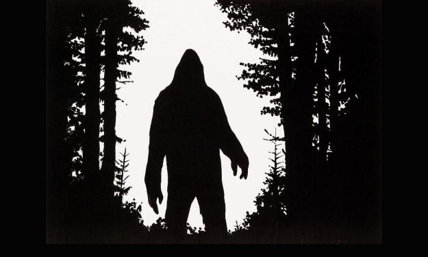 Did bigfoot kidnap a missing  teenager?