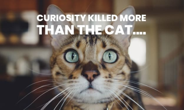 Curiosity killed more than the cat