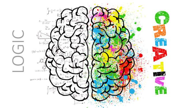Creative Writer's Brain