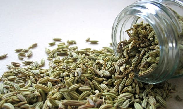 Fennel Seeds Advantages for Pores and skin
