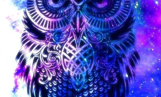 The Owl's Path