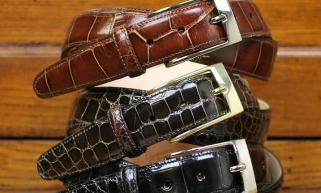 Why are Alligator Belts So Popular?