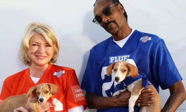 Puppy Bowl 17 will be hosted by Martha Stewart and Snoop Dog