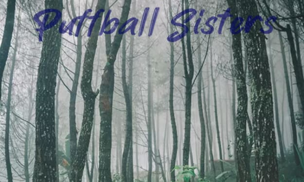 The Magical Puffball Sisters Story Description