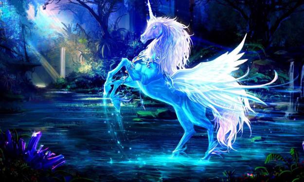Brave Ferri and the Magic Horse