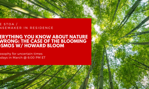 Everything You Know About Nature Is Wrong  The Case of the Blooming Cosmos with Howard Bloom