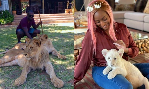 7 Celebrities Who Keep Wild Animals as Pets (Photos).