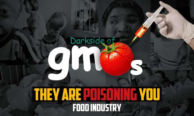 Darkside of GMOs - Food Industry