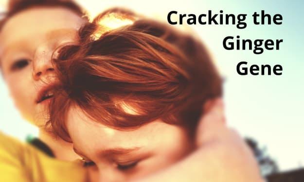 Cracking the Ginger Gene