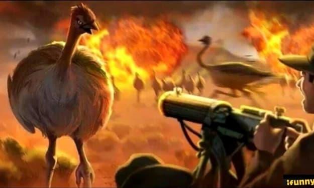 AUSTRALIA AT WAR… with EMUS!