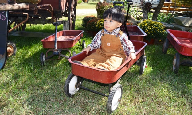 Tips to use your folding wagon in best way possible