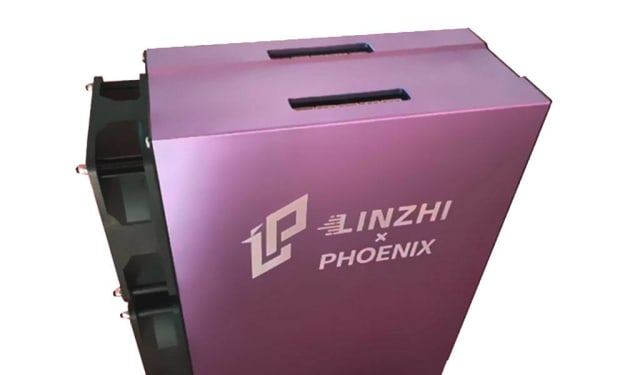 Best Linzhi Phoenix Tips You Will Read This Year.