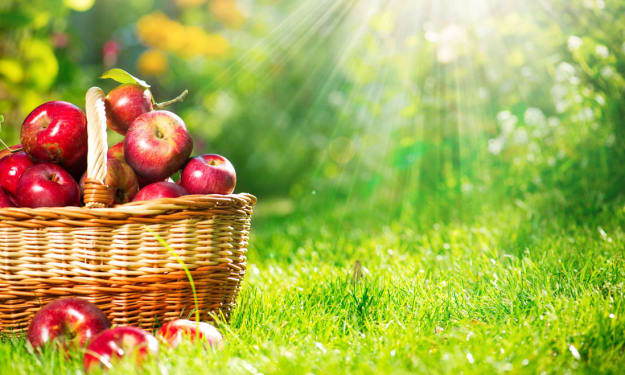 Top 5 Types of Apple In India - All You Need To Know