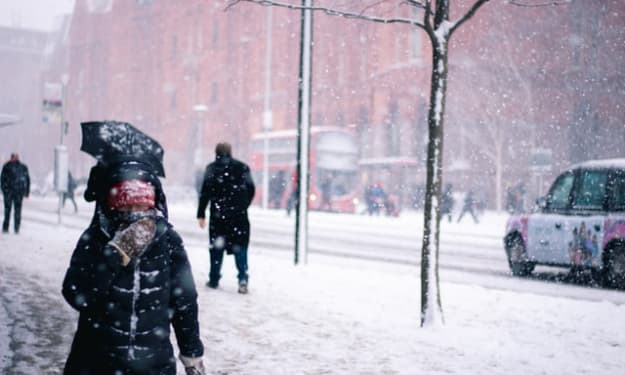 How Can Someone with an Aversion to Cold Winters Survive All Our Weather Seasons?