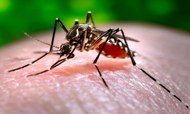 Climate Change And Infectious Diseases