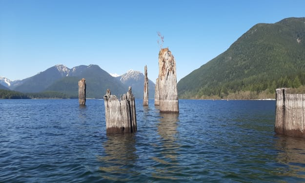 Visiting the Ghost Forest: Exploring Golden Ears Provincial Park