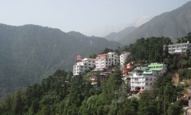 Lost and Found in Dharamsala