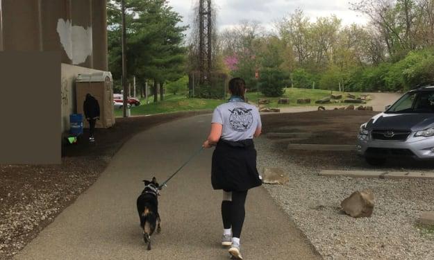 The Neighborhood According to Dog