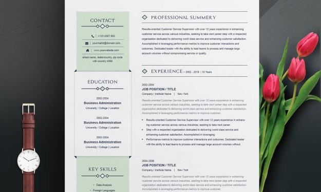 Customer Service Executive Resume