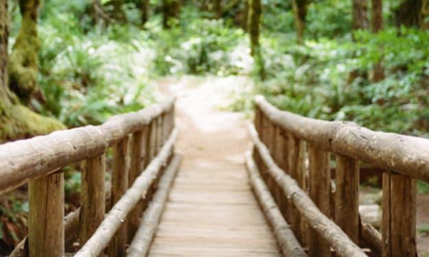 The Small Bridge