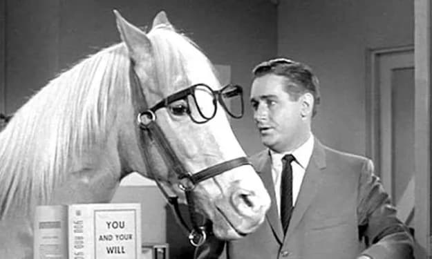 The famous Mister Ed