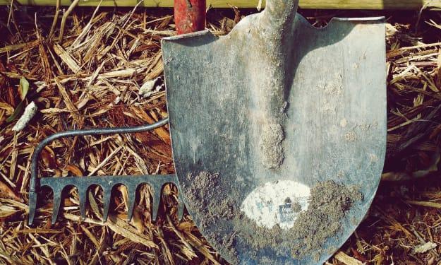 A Shovel Full of Dirt