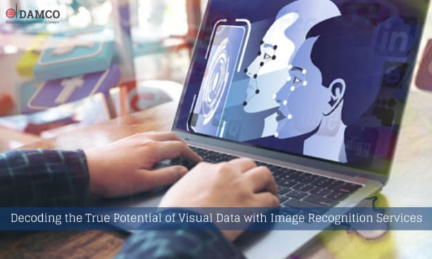 Decoding the True Potential of Visual Data with Image Recognition Services