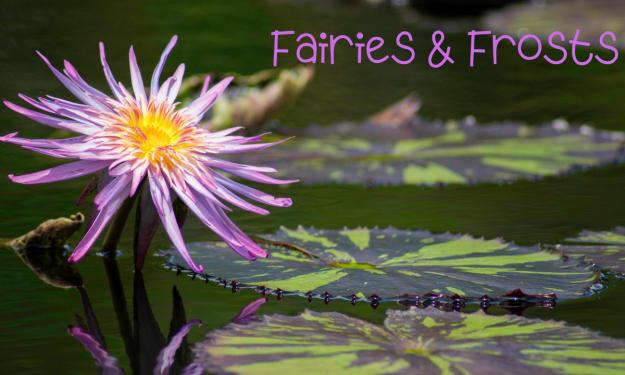 Fairies & Frost